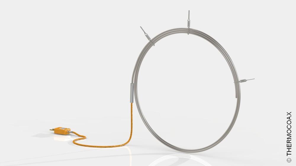 thermocouple-2 PRe I 30 Cl1 600mm TI DT 2PR25 5cm FIM-S